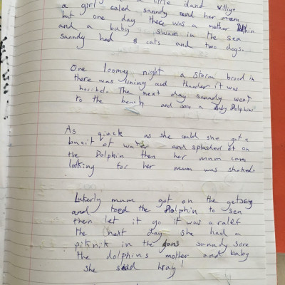 Sofia, age 8, wrote a story about a dolphin