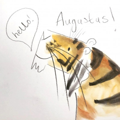 A close up of Catherine's drawing of Augustus