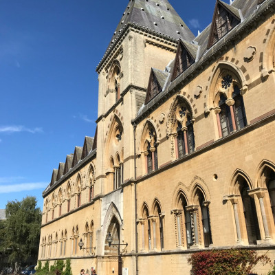 The Oxford Museum of Natural History looked beautiful in the sunshine