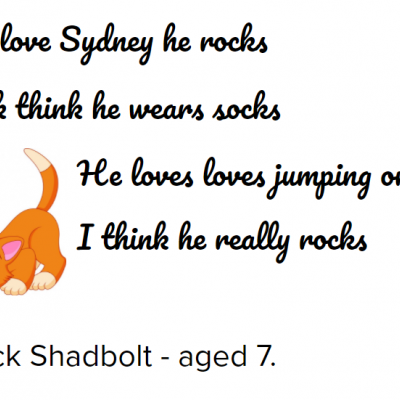 Inspired by Michael Rosen, Jack wrote a poem about his cat Sydney!